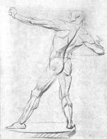 2. 2-я стадия рисунка экорше фигуры человека