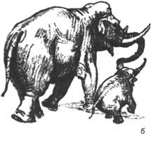 49. А. Лаптев. «Слониха со слоненком». Набросок «от себя» на ту же тему. Сангина
