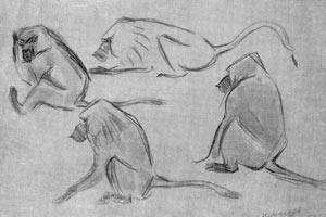 10. Е. Николаев. Зарисовки карандашом и акварелью