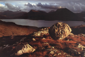 Фотографии Дэвида Уорда. Лес Бен-Дамф. Шотландия