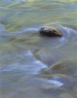 Фотографии Дэвида Уорда. Река Вэджин. Зайонский национальный парк, Юта, США