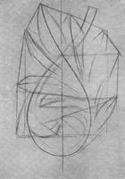 3. Лавровая ветка. 2-я стадия рисунка