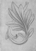 4. Лавровая ветка. Законченный линейный рисунок
