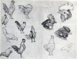 Рисунок 6. Учебные наброски и дополнительные зарисовки карандашом