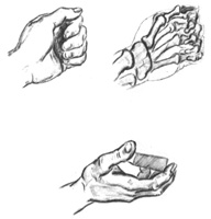 4.Упражнения на построение кисти руки