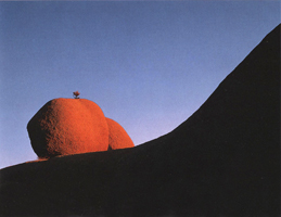 Фотографии Джека Дикинга. Валун