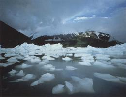 Фотографии Джеймса Рандклева. Айсберг в тумане. Ледник Портедж, полуостров Кенай, Аляска, США
