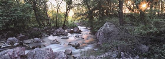 Фотографии Джима Бранденбурга. Катлинитовый ручейи