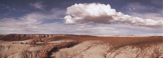 Фотографии Макдуфа Эвертона. Национальный парк «Окаменевший лес», Аризона, США