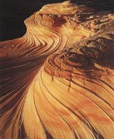 Фотографии Майкла Фатали. Сказки времени. Юго-Западная пустыня. 1999