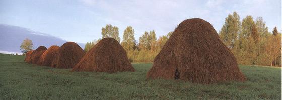 Фотографии Найала Бенви. Стога сена. Латвия
