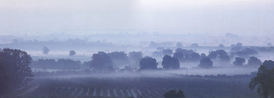 Фотографии Ниак Меерса. Раннее утро. Графство Херефордшир, Англия
