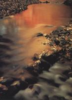 Фотографии Пэта О'Хары. Ручей Манасгаш, штат Вашингтон, США