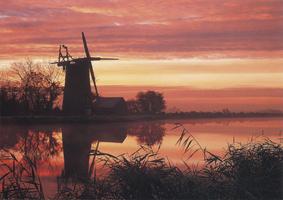 Фотографии Тома Мэкки. Восход у мельницы Оби. Бассейн реки Бьюр, Норфолк, Англия