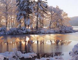 Фотографии Юсефа Ханфара. Национальный парк «Медвежья гора», штат Нью-Йорк, США